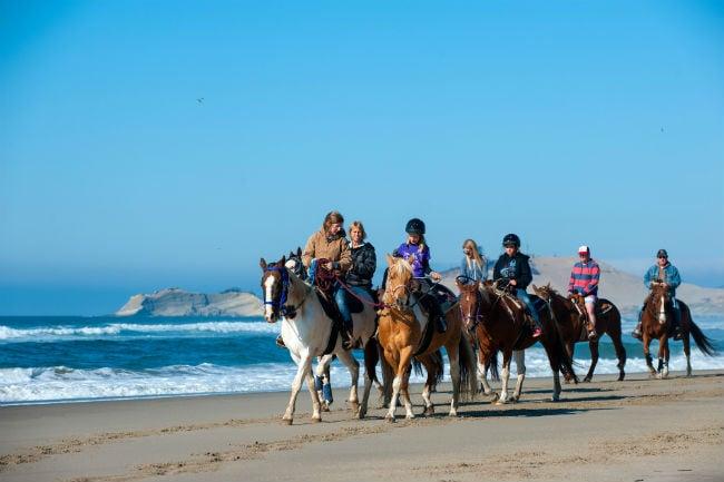 Top 9 U.S. Destinations for Beach Horseback Riding