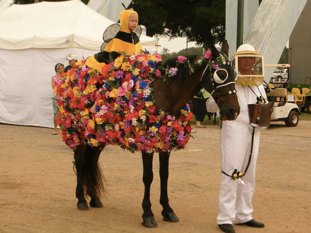 Bee Flowers Horse Costume