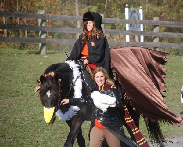 25 horse rider halloween costume ideas you wont believe harry potter horse costume solutioingenieria Image collections