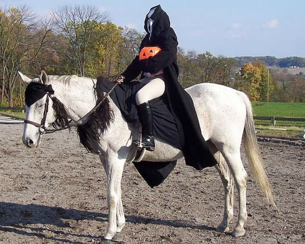 25 horse rider halloween costume ideas you wont believe headless horseman horse costume solutioingenieria Image collections