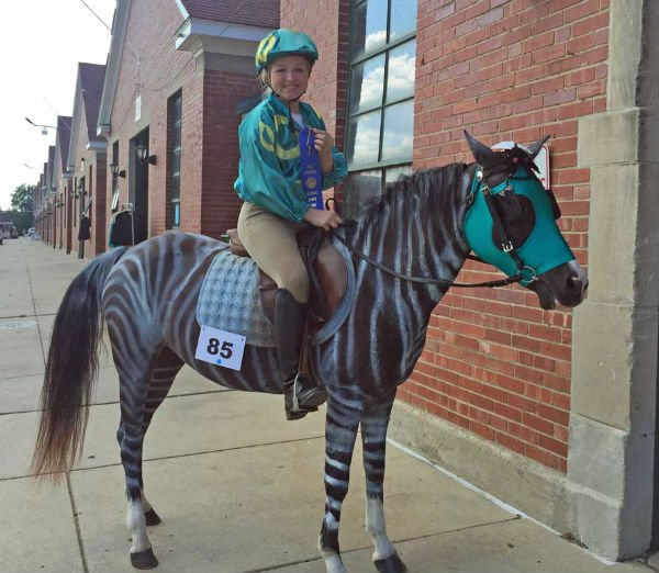 Racing Stripes Horse Costume