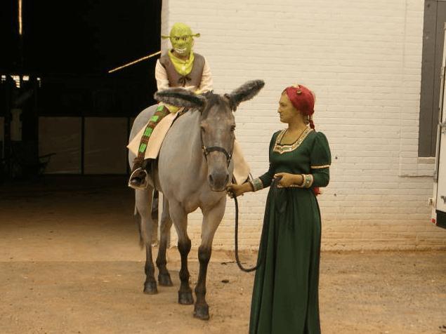 25 horse rider halloween costume ideas you wont believe shrek horse costume solutioingenieria Image collections