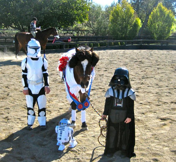 Star Wars Horse Costume