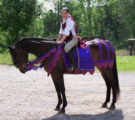 25 horse rider halloween costume ideas you wont believe medieval horse costume solutioingenieria Image collections