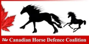 Canadian Horse Defence Coalition