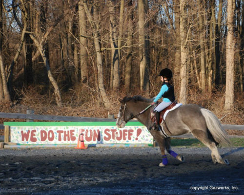 "Harvest View Stables has a motto ""We do the fun stuff!"""
