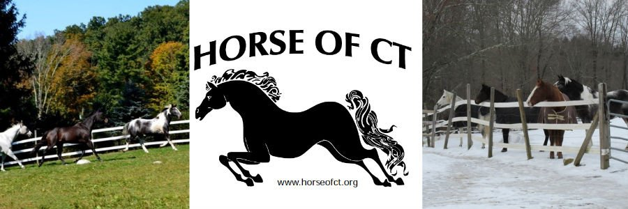HORSE of CT