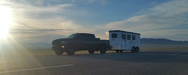 How to Get Horse Trailer Service When You Need Repairs