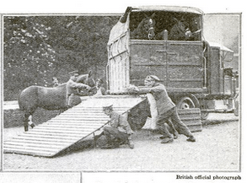 world war II horse trailer