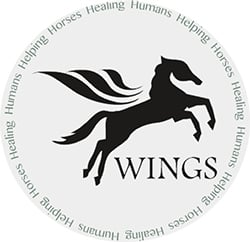 wings programs