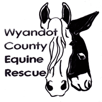 Wyandot County Equine Rescue Ohio