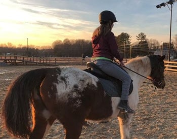 northern-virginia-therapeutic-riding-program