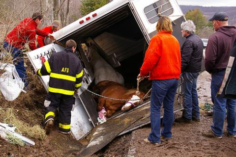 Managing A Horse Trailer Accident