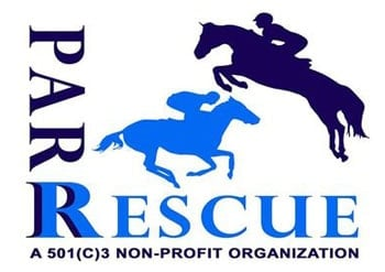 Pa racehorse rehoming pennsylvania