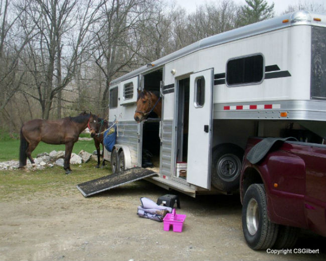 Cindy Gilbert shares her approved Double D Trailers Horse Trailer Packing List.